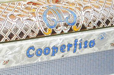 Cooperfisa